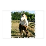 BEAUTIFUL HORSES Postcards (Package of 8)