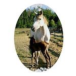 BEAUTIFUL HORSES Oval Ornament