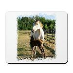 BEAUTIFUL HORSES Mousepad