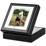 BEAUTIFUL HORSES Keepsake Box