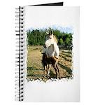 BEAUTIFUL HORSES Journal