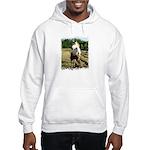 BEAUTIFUL HORSES Hooded Sweatshirt