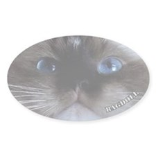 Ragdoll Sticker Seal Point (Oval)