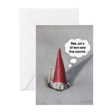 Cute Funny gnomes Greeting Card