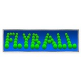 Flyball Bumper Car Sticker