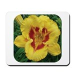 Fooled Me Daylily Mousepad