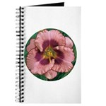 Daring Deception Daylily Journal