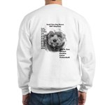 2007 ST Adoptions Sweatshirt