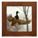 Morning Flight Framed Tile