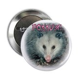 Possum?