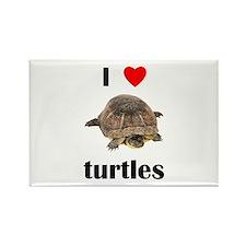 I love turtles Rectangle Magnet