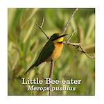 Little Bee-eater Tile Coaster