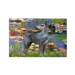 Lilies #2 & PS Giant Schnauze Rectangle Magnet