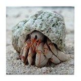Hermit Crab Tile Coaster