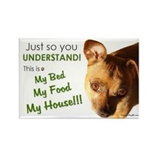 Funny Chihuahua Magnet My Bed My Food My House