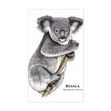 Koala Rectangle Decal