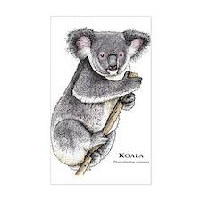 Koala Rectangle Decal