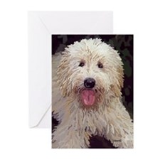 Golden Doodle Painting Greeting Cards (Pk of 20)