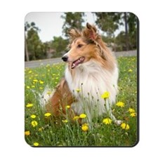 Sheltie & Flowers Mousepad