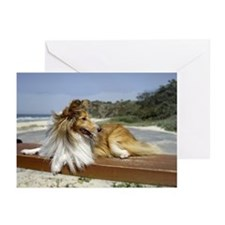 Sheltie on the Beach Greeting Cards (Pk of 10)