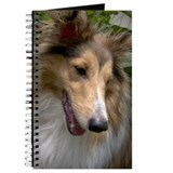 Sheltie Face Journal