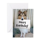Sheltie Photo Greeting Card