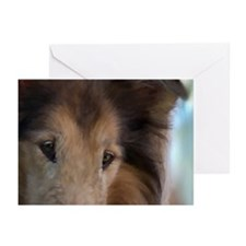 Rough Collie Art Greeting Cards (Pk of 10)