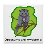 Opossums are Awesome Tile Coaster