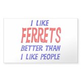 I Like Ferrets Rectangle Decal