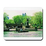 Romance in Central Park Mousepad