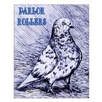Parlor Roller Pigeon Small Poster