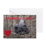 Prisoner of Love Cairn Terrier Greeting Cards (Pk