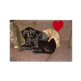 Cuddly Canine Companions Heart Rectangle Magnet