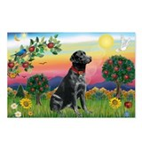Bright Country & Black Lab Postcards (Package of 8