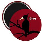 Ivory-billed Woodpecker: iLive Magnet
