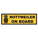 Rottweiler on Board Bumper Car Sticker
