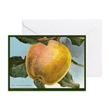 White Winter Pearmain Greeting Cards (Pk of 20)