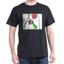 I Love Laos T-Shirt
