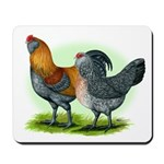 Easter Egg Chickens Mousepad