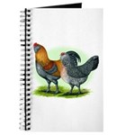 Easter Egg Chickens Journal
