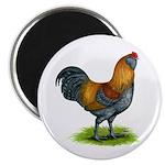 Easter Egg Rooster Magnet