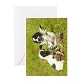 Cocker Spaniel Puppies Greeting Card