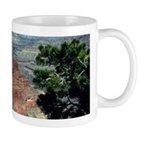 Grand Canyon Red Rock Mug