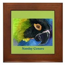 NANDAY CONURE Framed Tile