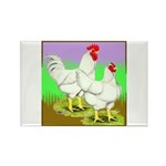 Cornish/Rock Fowl Rectangle Magnet (10 pack)