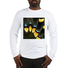 Papilio Polyxenes Butterfly Long Sleeve T-Shirt
