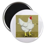 Cornish/Rock Cross Hen 2.25