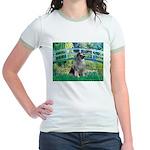 Bridge / Keeshond Jr. Ringer T-Shirt