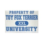 Toy Fox Terrier U. Rectangle Magnet (10 pack)