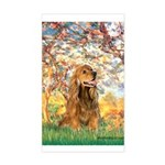 Spring /Cocker Spaniel (buff) Sticker (Rectangle)